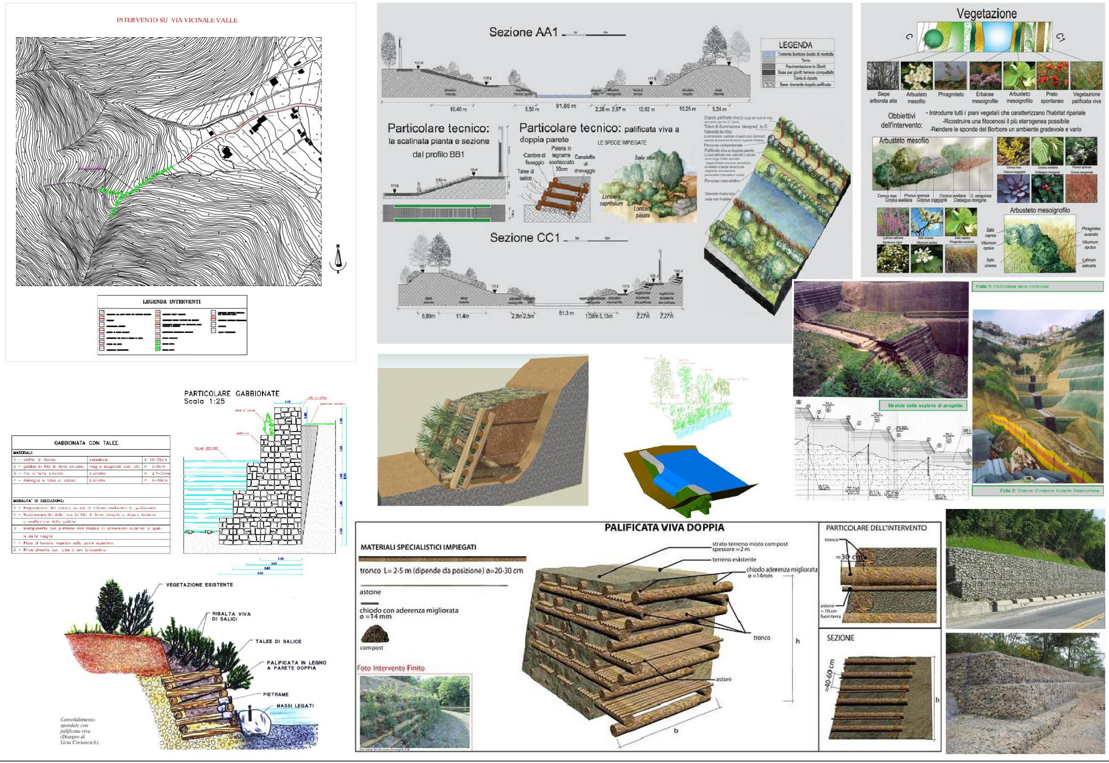 schede-forestazione_provincia-bn-model-2